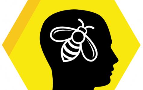 Brain What? Brain Bee