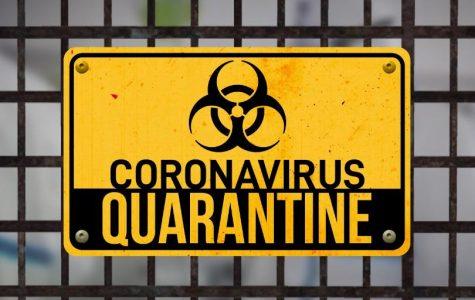 Corona Virus: What Happens Next?
