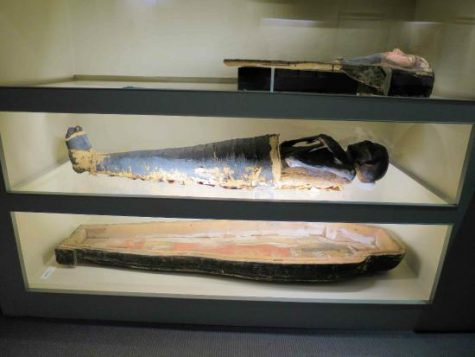 The Albany Mummie