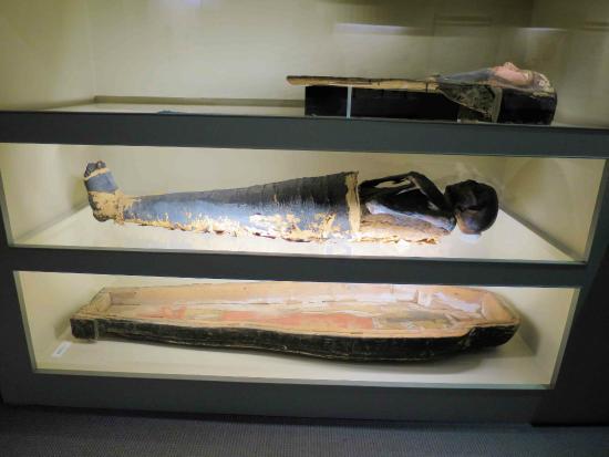 The Albany Mummie